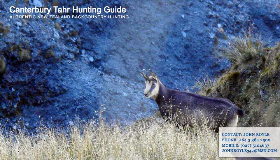 About – Canterbury Tahr Hunting Guide NZ